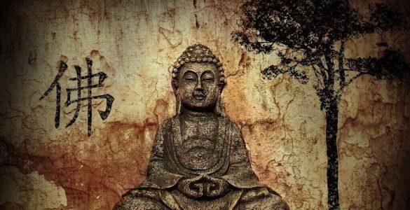 El loto y el Budismo
